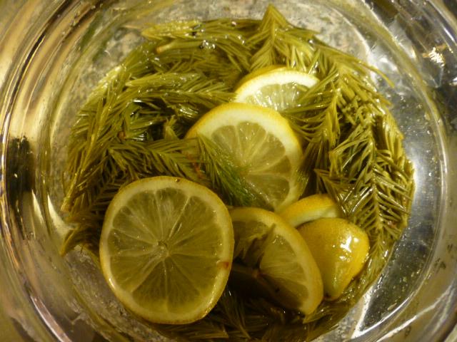 Grannåle trækker i sukker- og citronlage